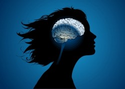 Dialectical Behavior Therapy Program