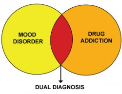 Dual Diagnosis Treatment Program
