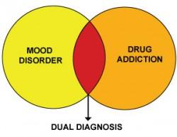 Dual Diagnosis Treatment Program